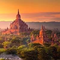 Burmese_200px_opt
